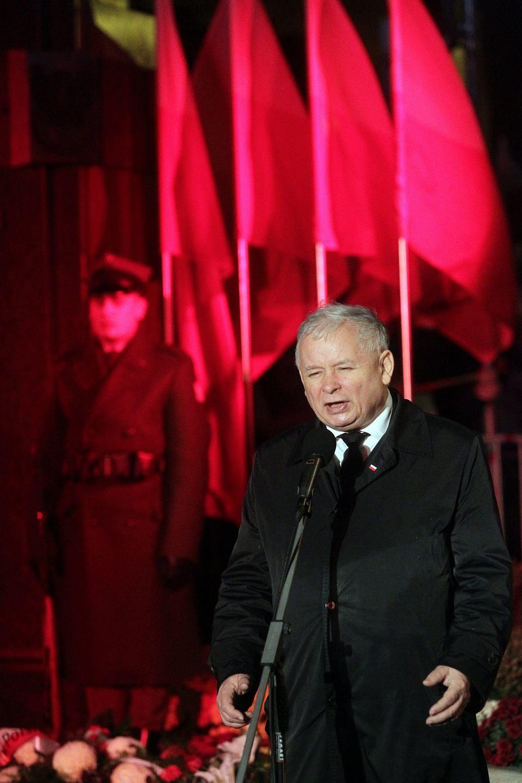Zdjęcie numer 3 w galerii - Kustosz Kaczyński