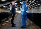 Hodowle norek mogą być transmiterem zmutowanego koronawirusa. Zakażone zwierzęta w Danii, na Litwie, w Polsce...