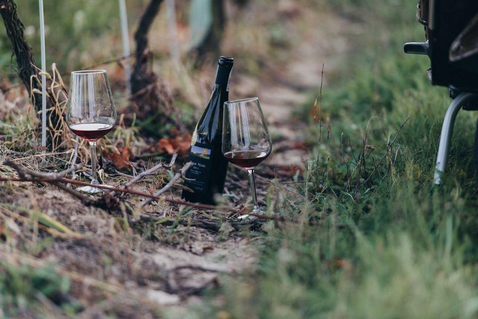 Zdjęcie numer 12 w galerii - Dobre polskie wina naprawdę istnieją, choć budzą kontrowersje. Głównie ze względu na cenę
