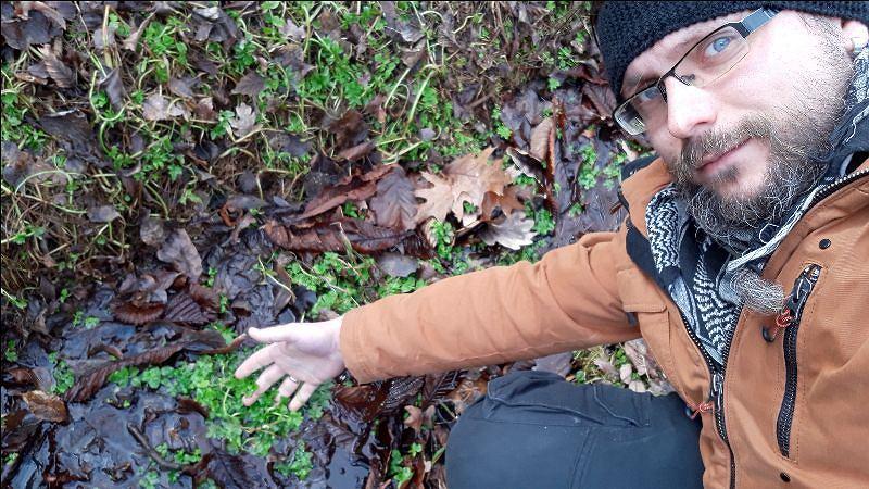 Sebastian Pilichowski pokazuje siedlisko selerów węzłobaldachowych