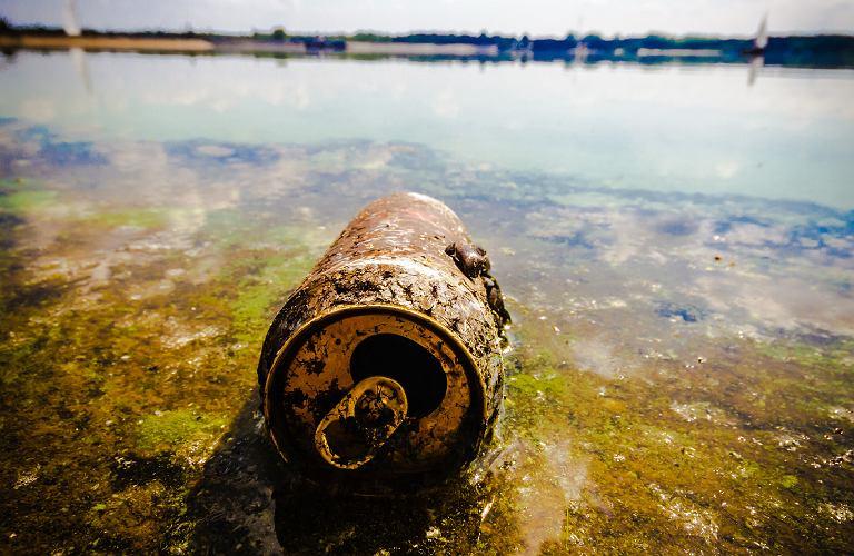Otyłość, zanieczyszczone powietrze, brudna woda i seks bez ...