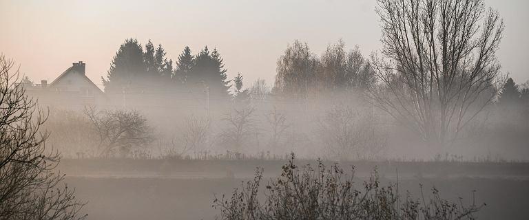 Pogoda. Silna mgła w ośmiu województwach. Ostrzeżenia IMGW
