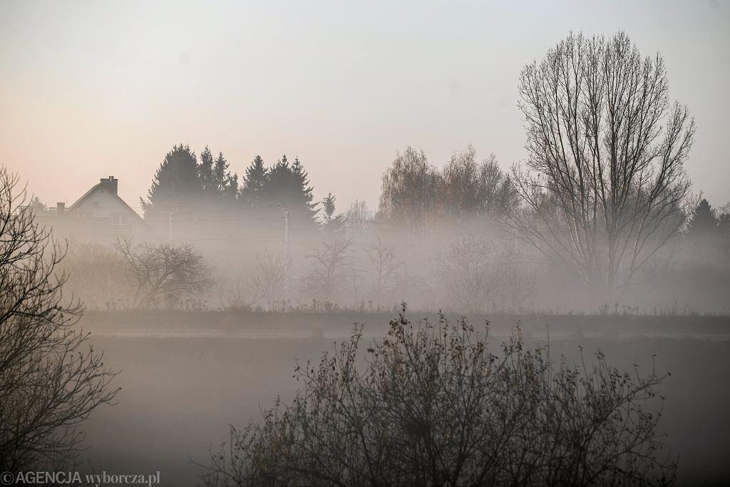 Poranne mgły w okolicach Lublina, 8 listopada 2018