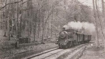 Pociąg na trasie Szczecin-Kołbacz. Teraz ma tu powstać trasa rowerowa