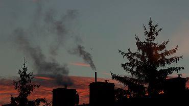 Wstępne badania AGH. Najwięcej zachorowań na COVID w rejonach z zanieczyszczonym powietrzem