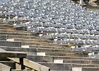 Ruch Chorzów. Na Stadionie Śląskim niebiescy mają grać tylko prestiżowe mecze