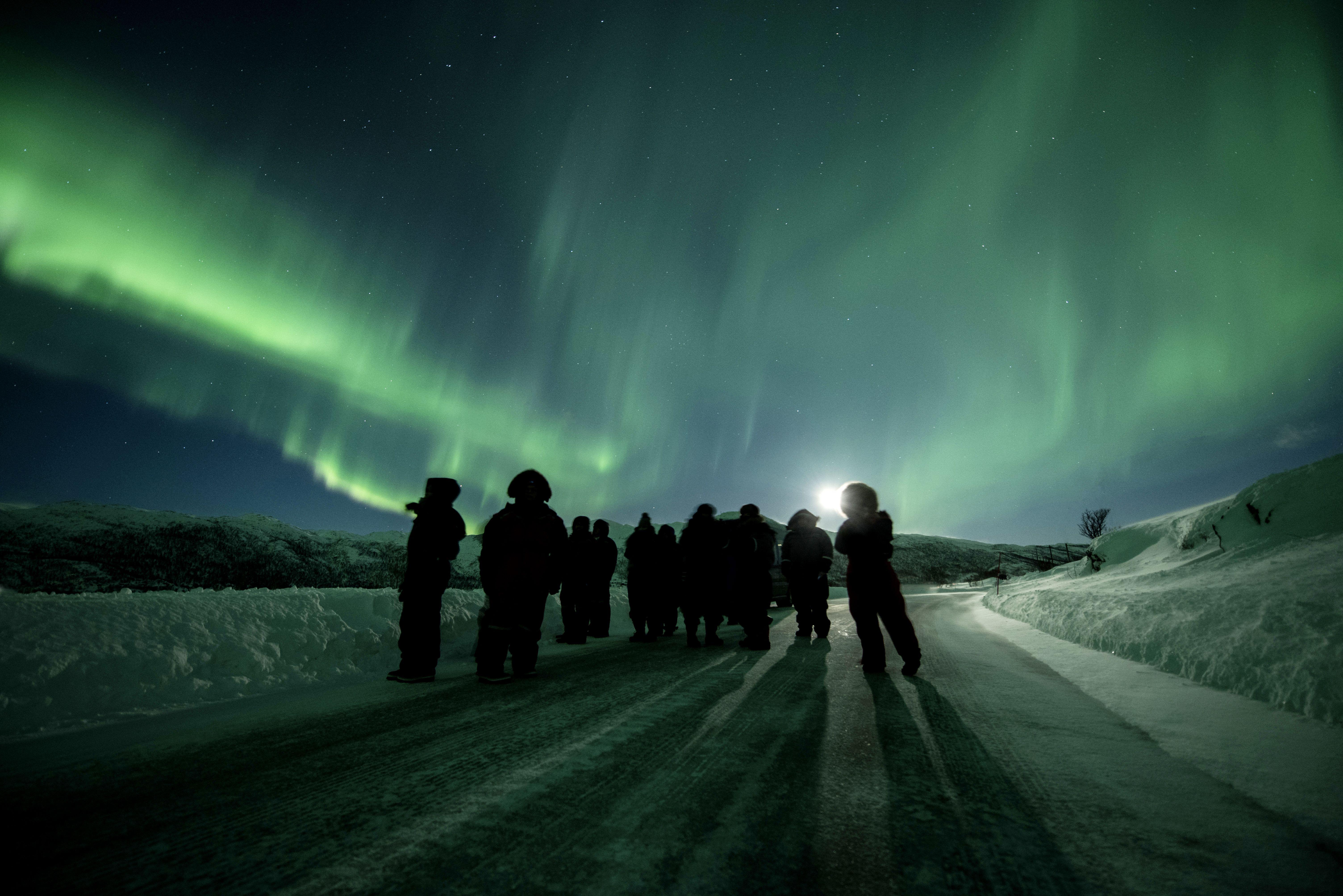 Norwegia. Polscy przewodnicy szukają całymi nocami zorzy
