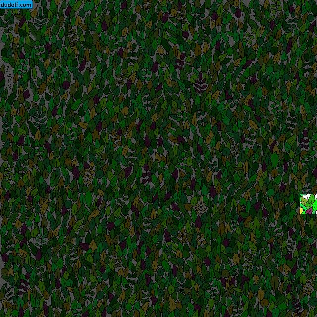 Gdzie jest żaba?