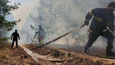 Pożary w lasach wokół Czarnobyla
