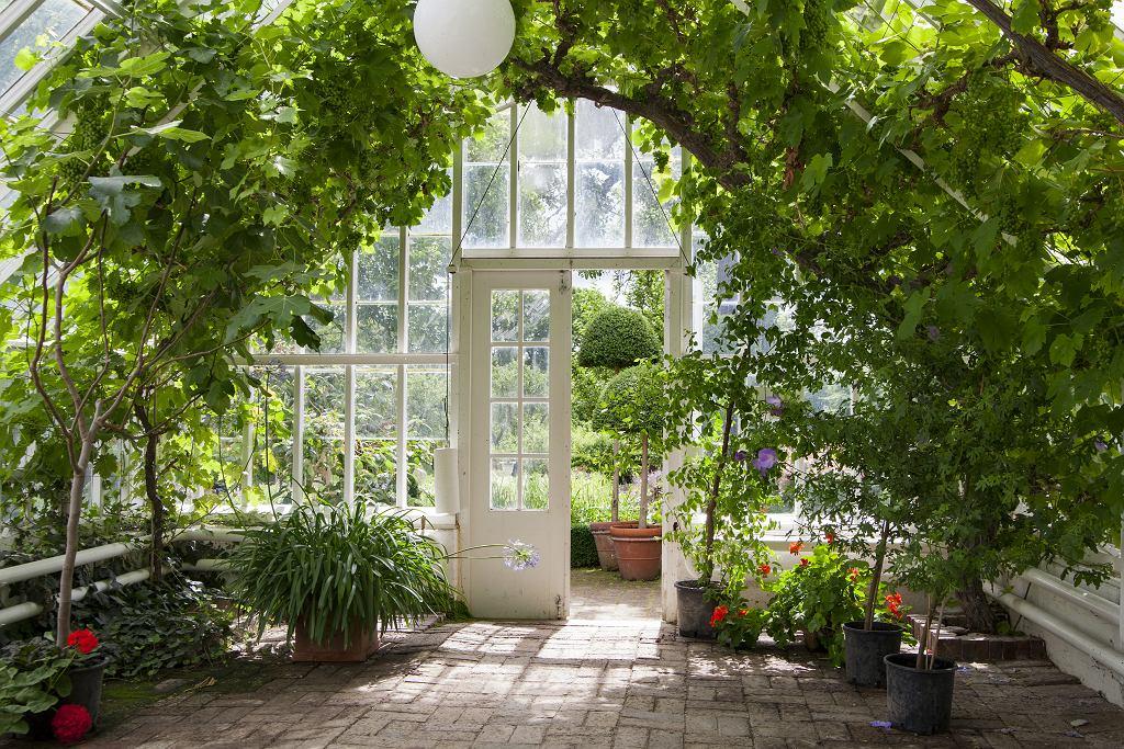 Szklana altana ogrodowa.