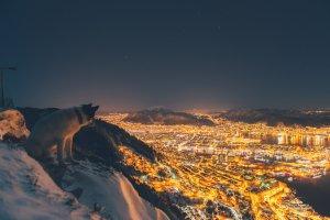 Znudziła go praca w korporacji. Teraz wędruje po górach ze swoim psem i robi fenomenalne zdjęcia