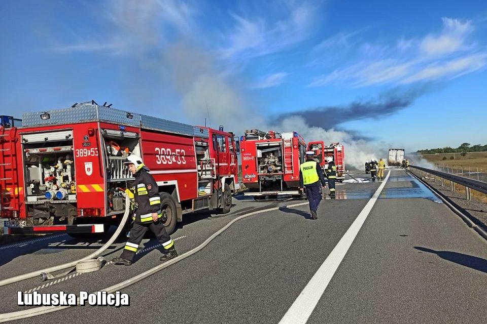 Zdjęcie numer 2 w galerii - Pożar na drodze S3 pod Nową Solą. Naczepa spłonęła niemal doszczętnie