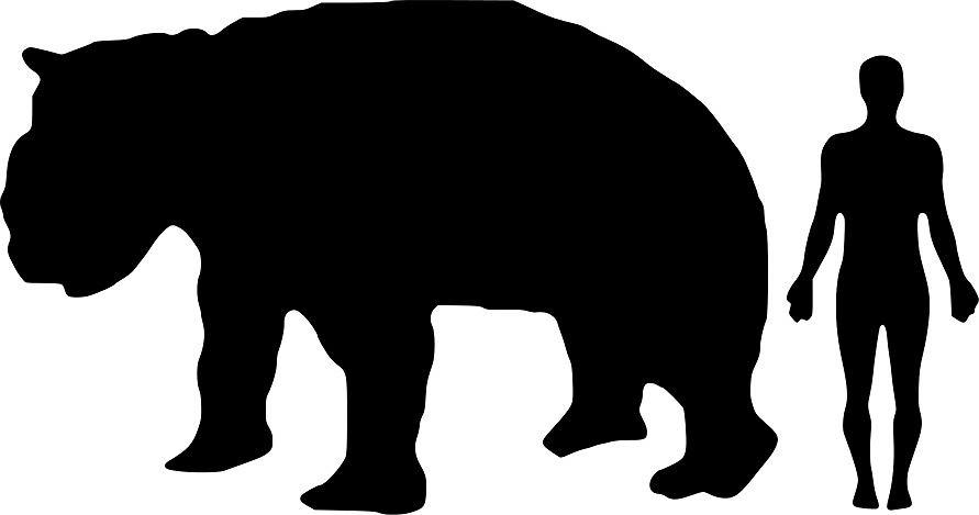 Zdjęcie numer 4 w galerii - Największe i najdziwniejsze - wymarłe ssaki
