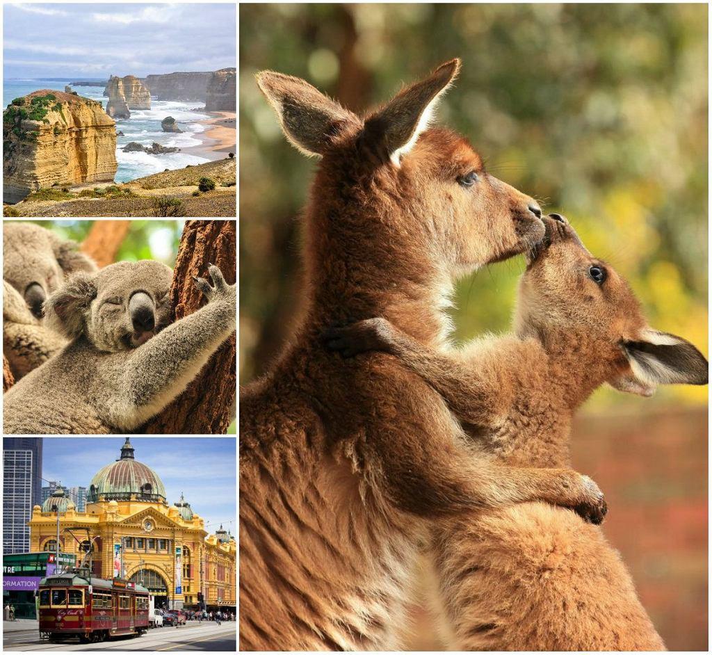 Oszałamiająca Australia