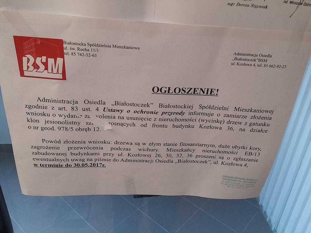 Wycinka na Białostoczku