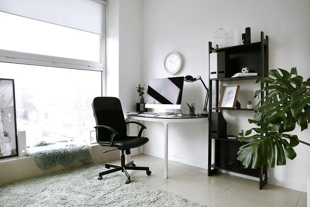 Jak dobrze dobrać fotel obrotowy do biura