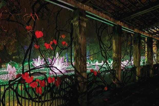 Królewski Ogród Światła w wilanowskim pałacu.