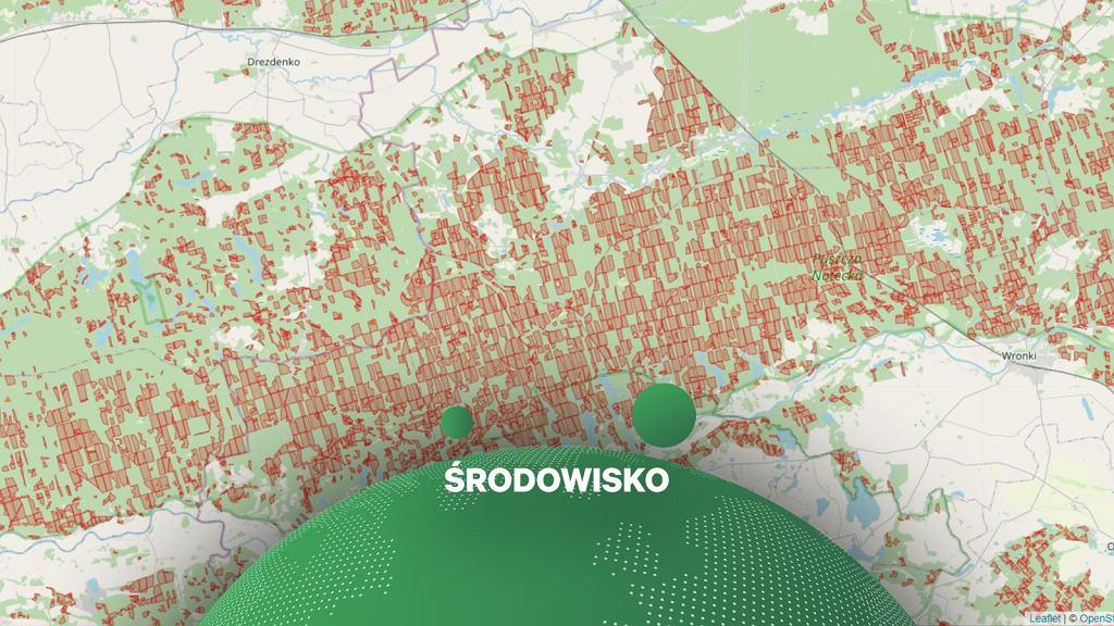 Obywatelska mapa pokazująca wydzielenia (czyli działki), w których nadleśnictwa planowały lub planują rębnie (czyli wycinki drzew)