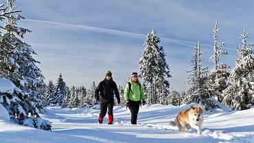 Zima w Polsce / fot. Shutterstock