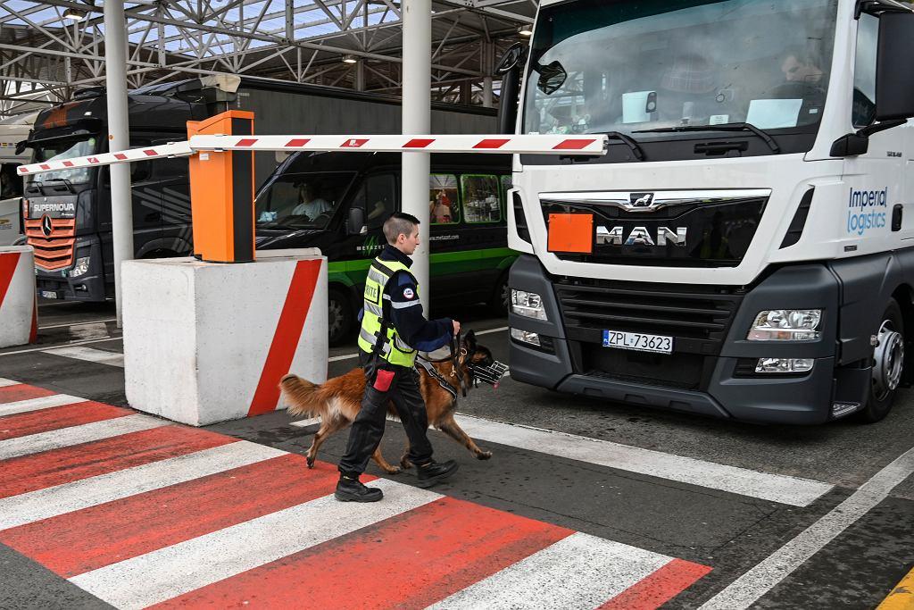 Brexit. Francja przeprowadziła test na granicy.