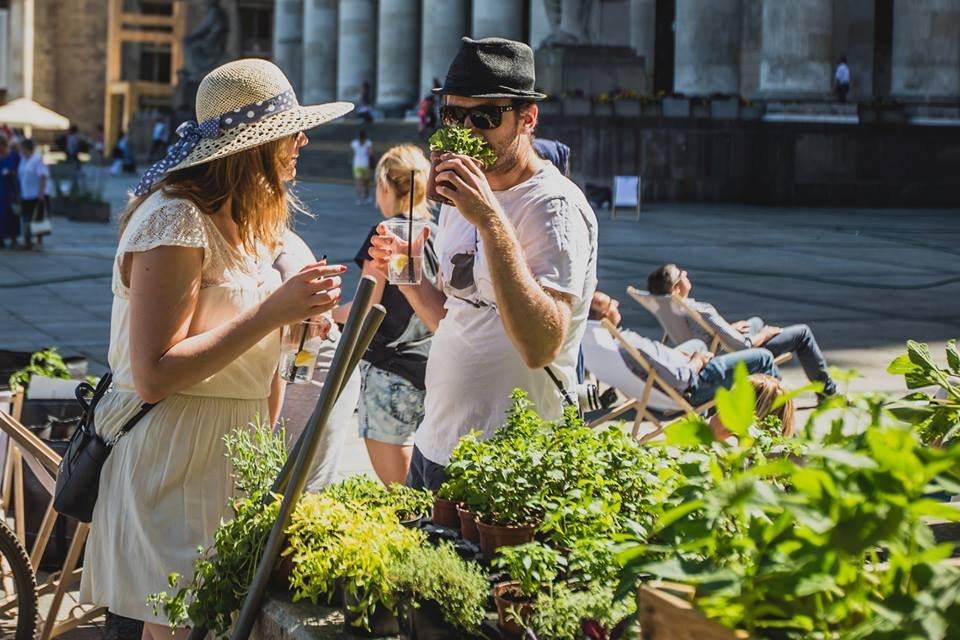 Ogród na Placu Defilad  / fot. Katarzyna Bąba