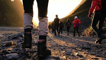 jak połączyć spacery z treningiem siłowym?