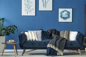 Trendy 2020: modne kolory ścian. Zobacz na jakie barwy warto postawić w swoim mieszkaniu lub domu