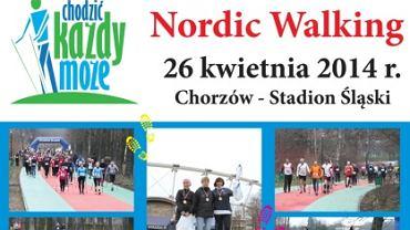 Plakat zapowiadający imprezę na Stadionie Śląskim