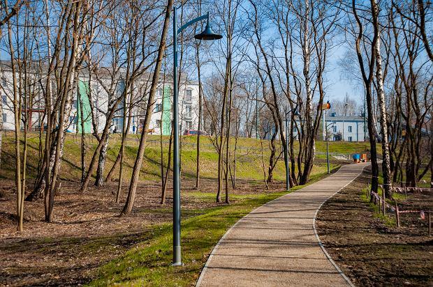 Zdjęcie numer 8 w galerii - Park Tysiąclecia w Sosnowcu w trakcie rewitalizacji.