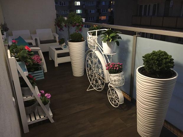 Balkoniada 2020
