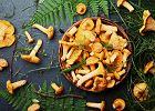 Kurki, czyli sezonowy comfort food. Jak przygotować kurki?
