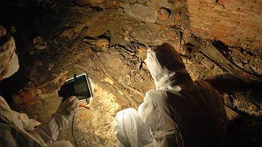 Badania archeologiczne w bazylice Wniebowzięcia Najświętszej Marii Panny w Rzeszowie