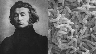 Wśród możliwych przyczyn śmierci Adama Mickiewicza wymieniana jest właśnie cholera, ale także... otrucie