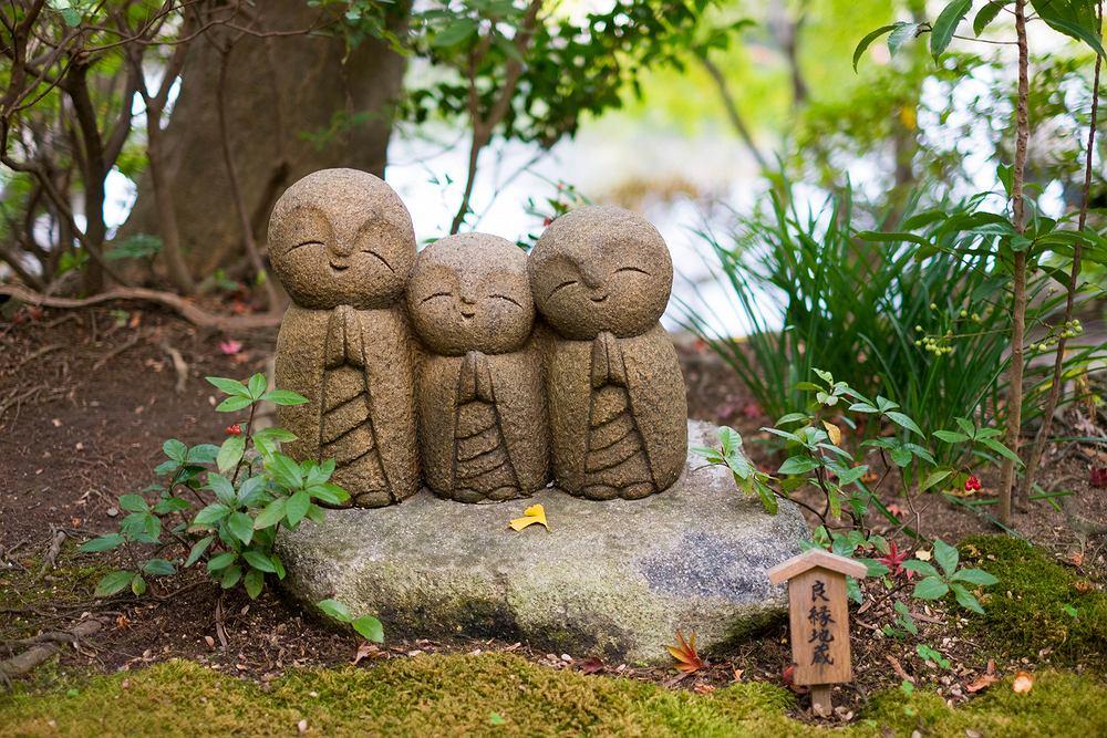 Ogród japoński. Zdjęcie ilustracyjne