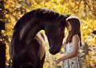 Filmy o koniach, które skradną serca najmłodszych widzów