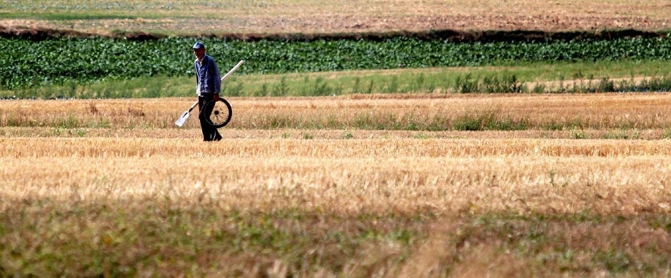 Czy czeka nas największa od 50 lat susza? Ekspert wyjaśnia (fot: Jakub Orzechowski/ Agencja Gazeta)
