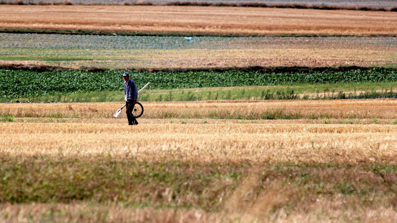 Czy czeka nas największa od 50 lat susza? Ekspert wyjaśnia