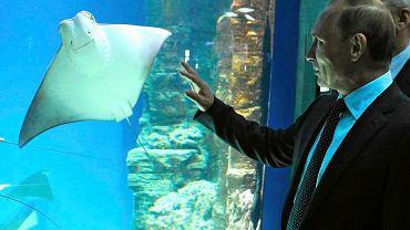 Prezydent Putin w moskiewskim centrum oceanografii i biologii morza, 4 sierpnia