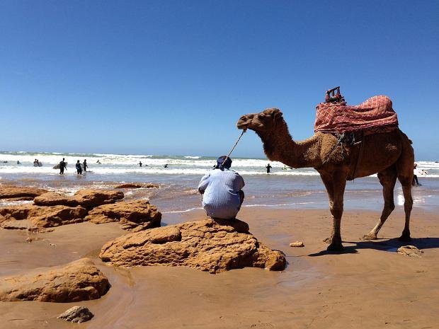 Agadir - miasto bez zabytków, za to z szeroką plażą. Powstało dla turystów [MAROKO]