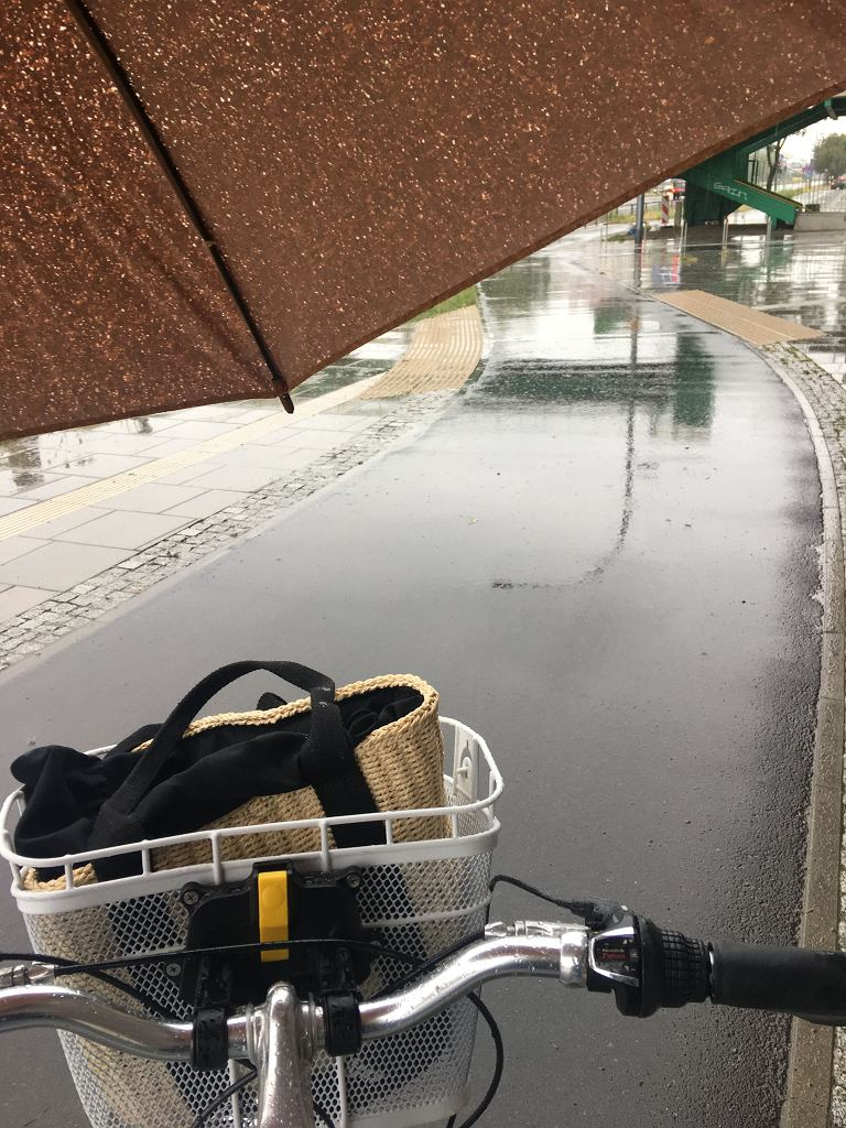 Od kilku tygodni do pracy jeżdżę na rowerze. Codziennie ok. 11-12 km. Nie poddaję się nawet podczas deszczu