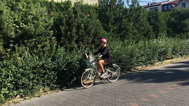 Do pracy codziennie jadę na rowerze. Robię ok. 12 km dziennie