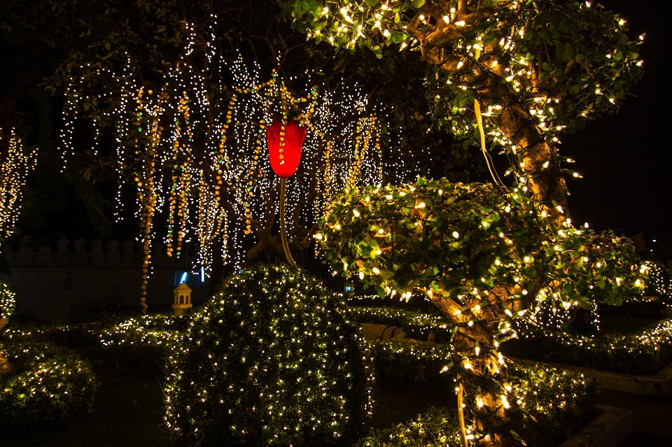 Dekoracje świetlne do ogrodu