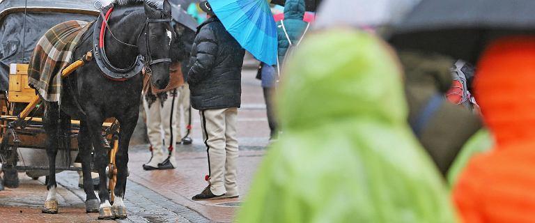 Burmistrz Zakopanego o feriach: Zbyt wczesna decyzja premiera