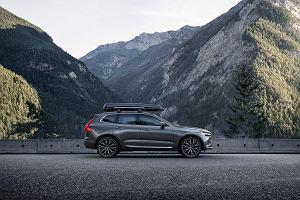 Ranking nowych SUV-ów klasy premium. Luksusowe nowości najlepszych marek