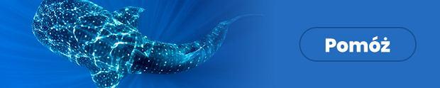 Oceany to ponad 70% powierzchni Ziemi. Pomóż nam je chronić!