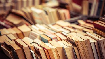 Najpiękniejsze cytaty z książek. Sprawdź, czy znasz je wszystkie. Zdjęcie ilustracyjne