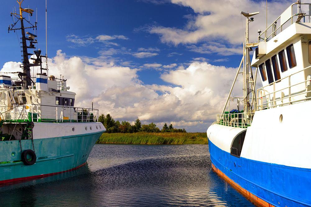 Jakie ryby nad Bałtykiem?