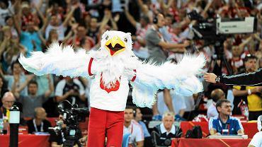 Cheerleaderki upiększają mecz Polska - Wenezuela we Wrocławiu