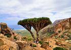 Najpiękniejsze wyspy Afryki. Znasz je wszystkie? Na jednej 30 proc. stanowią gatunki, których nie ma nigdzie indziej