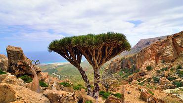 Najpiękniejsze wyspy Afryki, o których mogłeś nie słyszeć